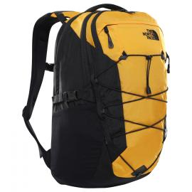 summit gold/tnf black